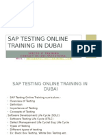 SAP TESTING Online Training in Dubai
