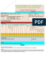 Consumer Credit Report Format