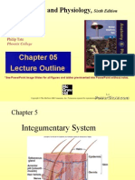 Anatomy and Physiology CHAP 5