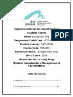 IA report (updated).doc