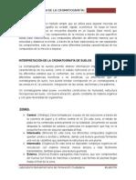 Interpretación Cromatogramas-FINAL (1)
