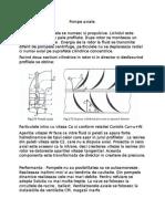 4.pompe axiale .doc
