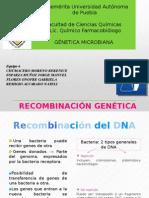 RECOMBINACIÓN GENETICA FCQ.pptx