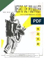 El Libro Negro de Polanuer