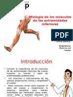 Ppt Miologia- Medicina Del Trabajo Rev_1
