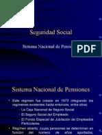 11[1]. Sistema Nacional de Pensiones (1)