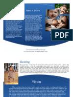 developingbaby - edited