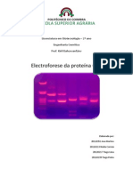 Eletroforese de GFP