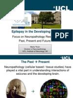 Epilepsy in the Developing Brain
