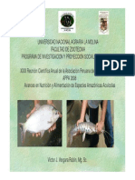 Avances nutricion alimentacion especies amazonicas acuicolas Ing. Vergara.pdf
