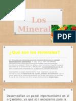 Minerales Biologia