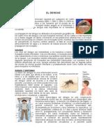 Dengue - Amaly