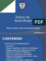 Capacitación Estilos de Aprendizaje Sep 2015
