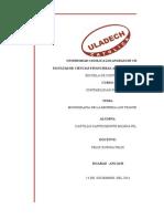 MONOGRAFIA-DE-ESTADOS-FIANNCIEROS-123 (9).xlsx