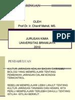 KULTUR-JARINGAN (1).ppt