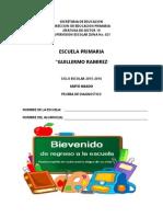 PicazoNoe_Primaria_Diagnostico