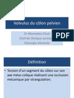 Volvulus Du Colon Pelvien