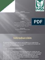 Presentacion IMSS.pptx