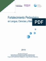 Programa Fortalecimiento Pedagogico