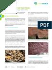 Ficha Clasificacion de Rocas