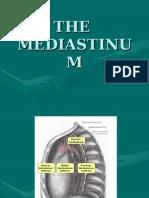 The Mediastinum
