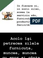 furnicuta