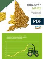 Runaway Maize - Soil Association