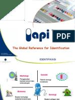 API Industry General