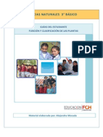 3ro_Estudiante_Funcion_clasificacion_plantas (2).pdf
