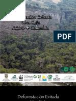 Guía REDD Colombia