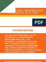 Dengue y Otras Enfermedades Metaxénicas en El Perú
