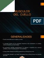 MUSCULOS DEL CUELLO Lateral, Prevertebral (1)