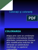 LP 3 - Coloratii.ppt