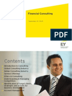 Financial Consulting Overview