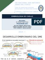 Seminario Embriologia de Cuello Ok