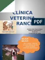 Clínica Veterina Sanfrancisco