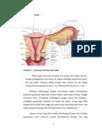 torsi kista ovarium