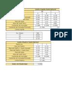 Indices Plasticidad