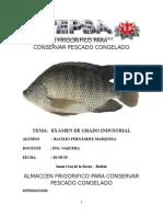 Pescado Del Proyecto Caso 1