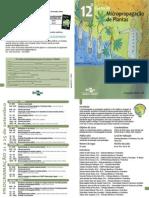 Modelo de Folder