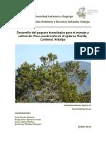 DESARROLLO DEL PAQUETE TECNOLÓGICO PARA EL MANEJO Y CULTIVO DE Pinus cembroides EN EL EJIDO LA FLORIDA, CARDONAL, HIDALGO (12-jun-15).pdf