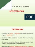 9. INTROSPECCIÓN