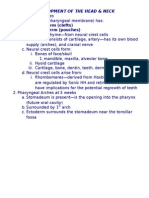 Temple Dental Histology Exam 3 (Dr. Fornatora)