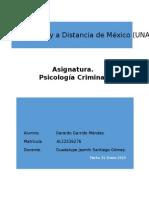 Psicopatologias y conductas delictivas