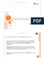 Copia seguridad.pdf