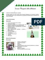 proyecto navideño