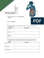 digestive system student worksheet