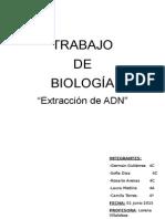 trabajo adn.docx