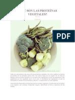 Qué Son Las Proteínas Vegetales