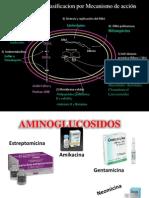 4.5. Aminoglucósidos